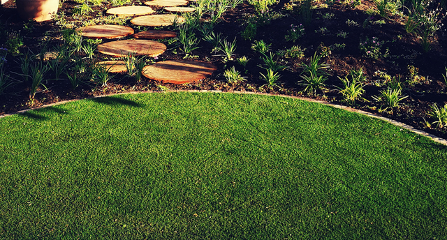 SECRETS TO A LAWN YOUR NEIGHBOURS WILL ENVY