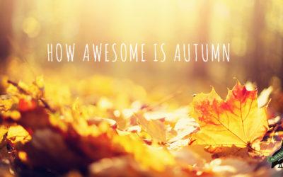 Autumn in your Garden